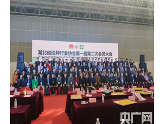 首届武汉地材及地坪展举行 聚焦行业发展新趋势